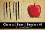 Charcoal Pencil Brushes 01