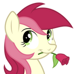 Roseluck Squared