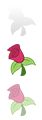 Roseluck Start Button by DJDavidhu