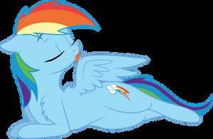 Grooming Rainbow Dash by DJDavid98