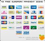 European Payment Web Icons Set