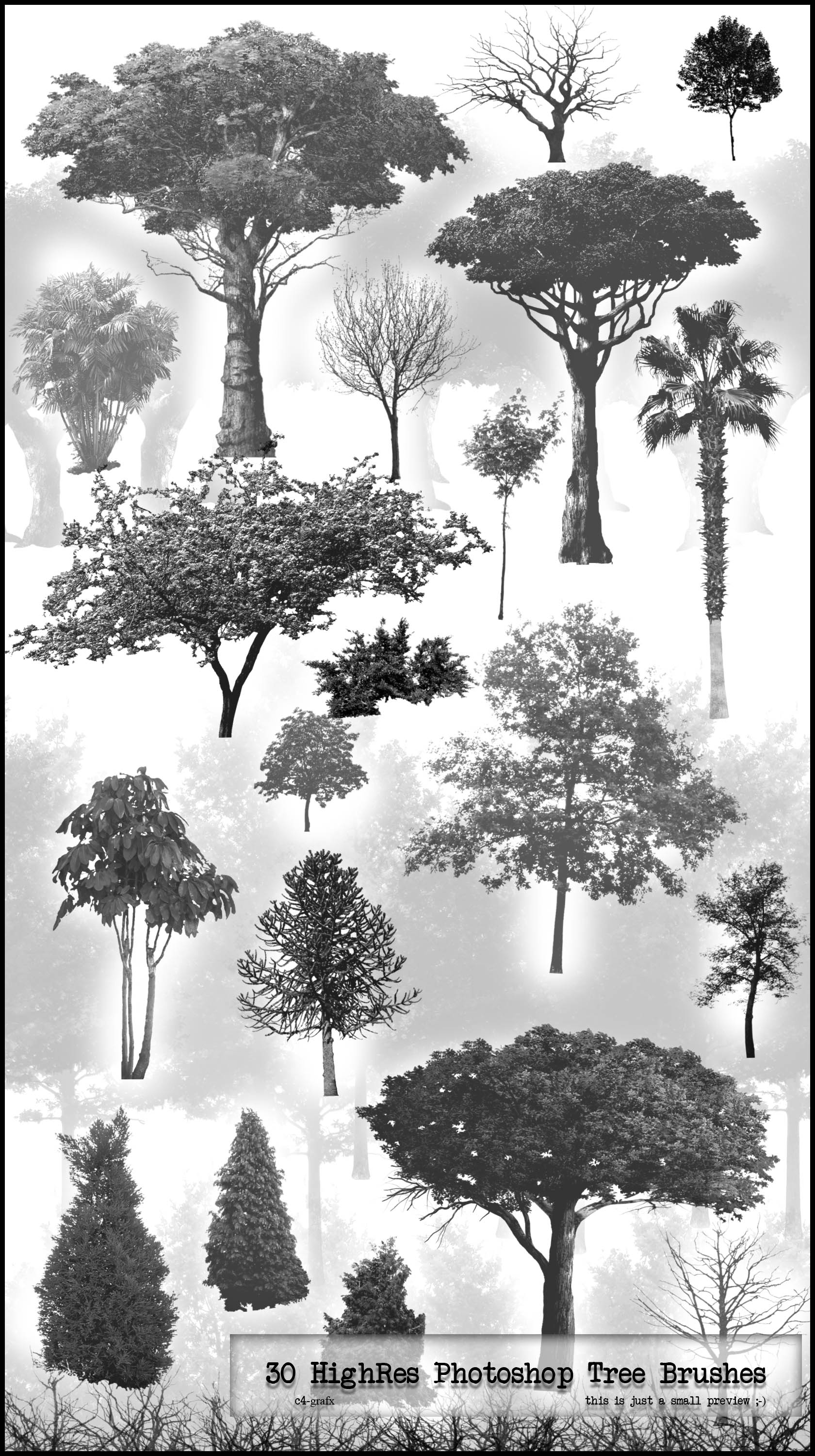 30 PS HighRes Tree Brushes