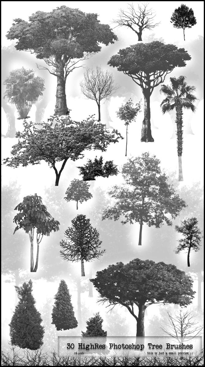 30 PS HighRes Tree Brushes by zigshot82