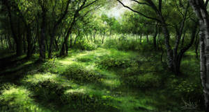 Green forest 1 of 3 by Sketchbookuniverse