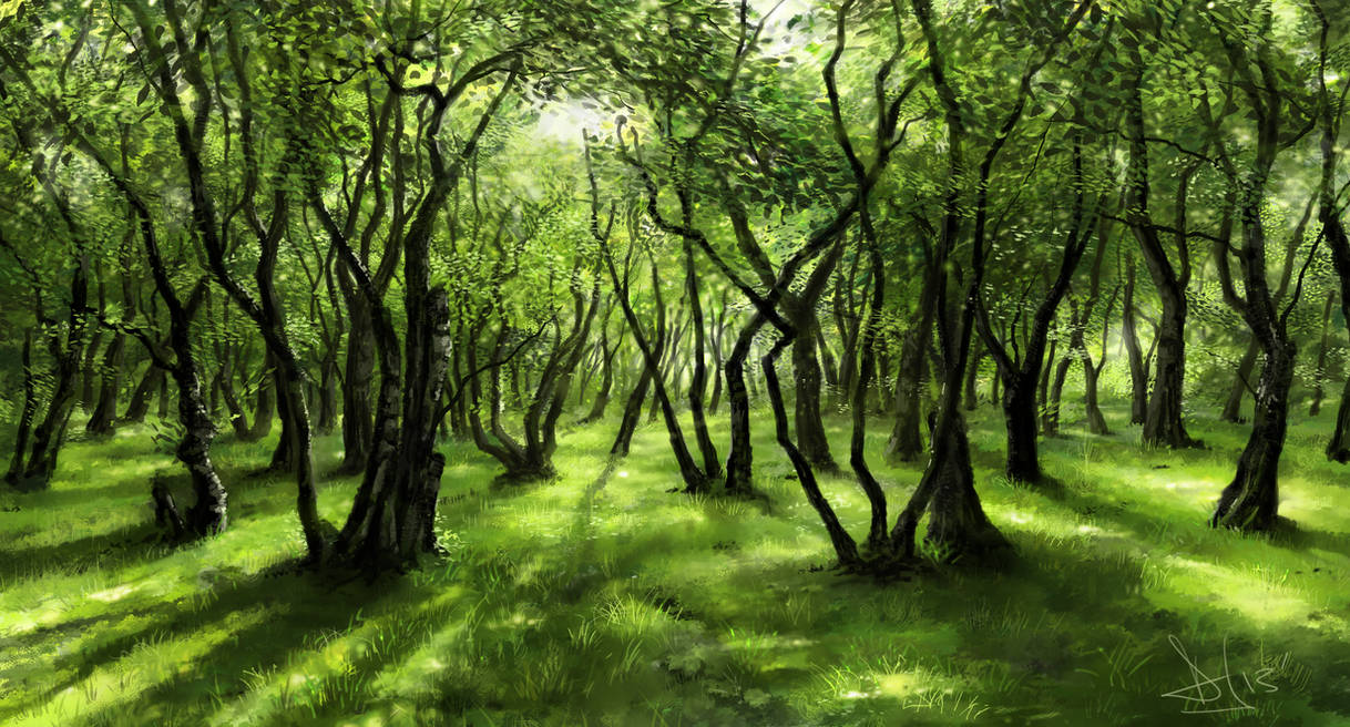 Green forest 2 of 3