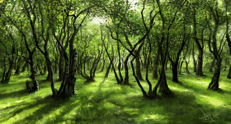 Green forest 2 of 3 by Sketchbookuniverse