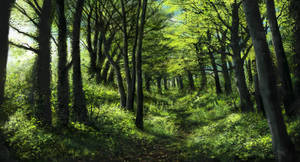 Green forest 3 of 3 by Sketchbookuniverse