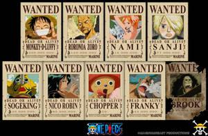 One Piece : Straw Hats Bounty