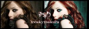 PSD 234 by freakyxsakura