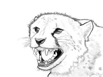Hissing Cheetah by juliolsson