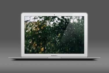 Autumn Rain by rm005759