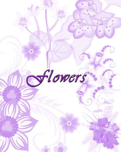 Download Flower Motif Ornament Brushes for Photoshop