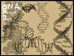 DNA Brushes for PSP 7