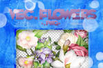 Recursos #4: Vectores Flowers .png