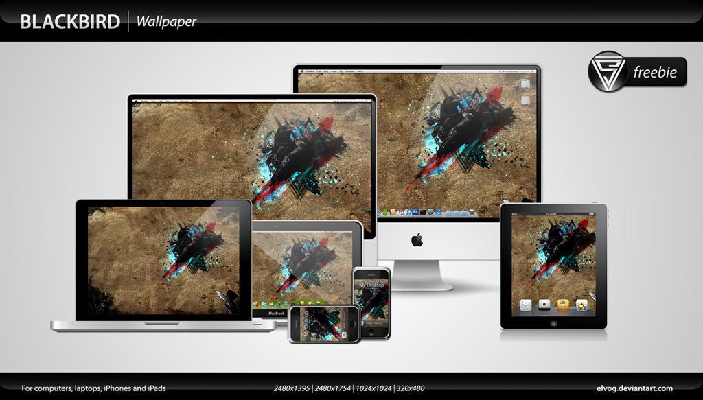 Blackbird Wallpaper by eLVog