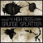 HR Grunge Splat Brush Pack 2