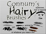 Connum's Hairy Brushes