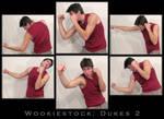 Wookiestock: Dukes Pack 2