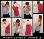 Wookiestock: Dukes Pack 3