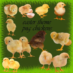 easter theme png chickens by roula33