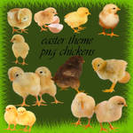 easter theme png chickens