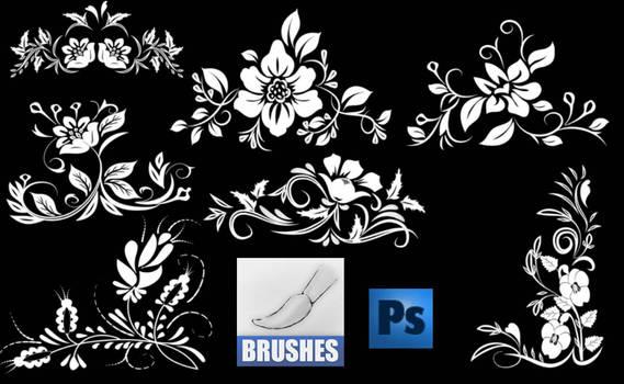 brushes 2573274