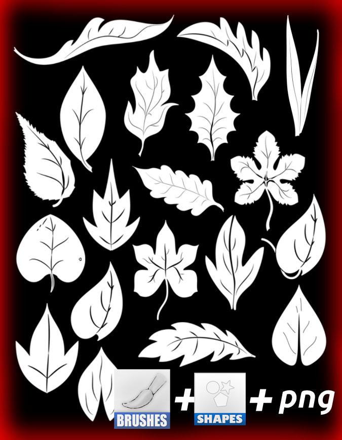 leaf by roula33
