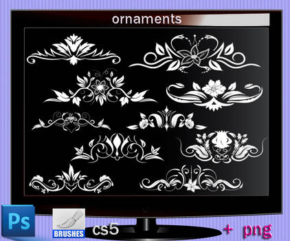 Ornaments Photoshop Cs5