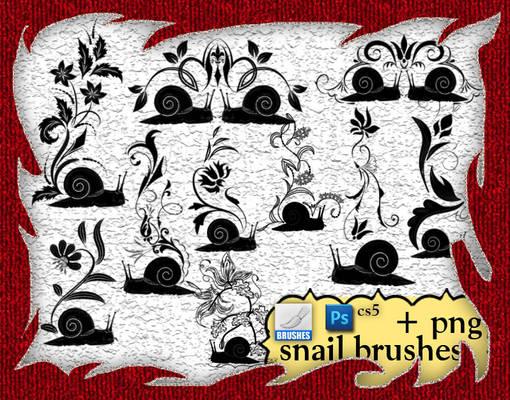 Snail Brushes