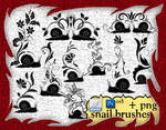Snail Brushes
