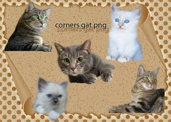 Corners Gat by roula33