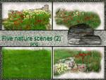 Five nature scenes  grasses(2)