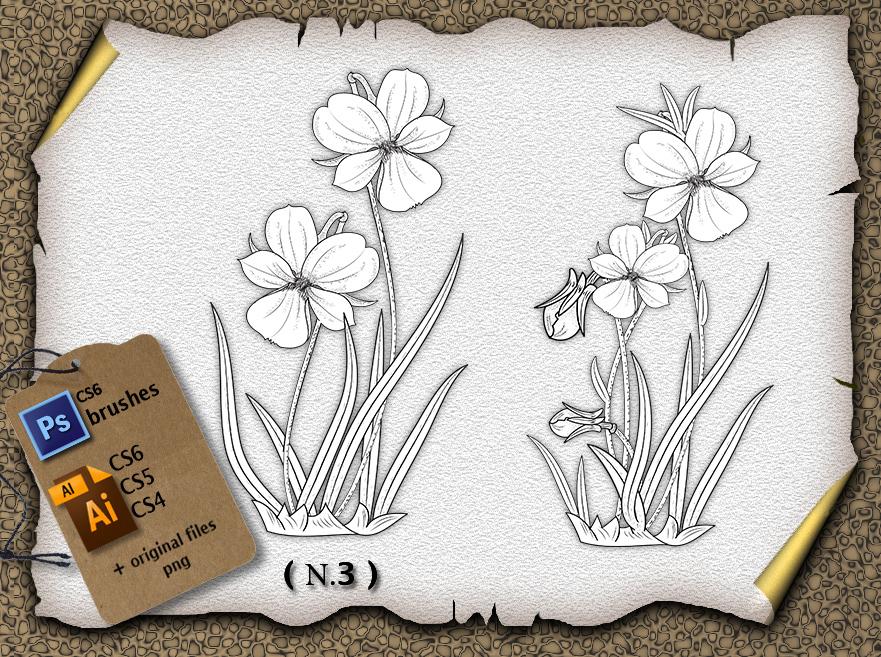 Flower N3