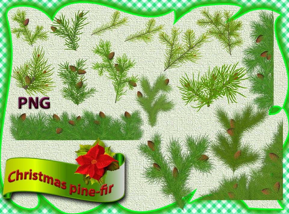 Christmas pine-fir by roula33 on DeviantArt