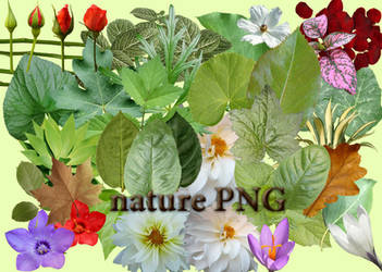 nature PNG by roula33