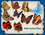PNG butterflies