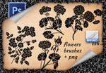 Flowers  Brushes (2)