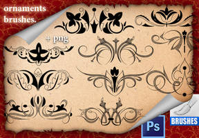 Ornaments Brushes. by roula33