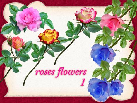 aA roses-1