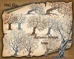 Autumn-Winter trees