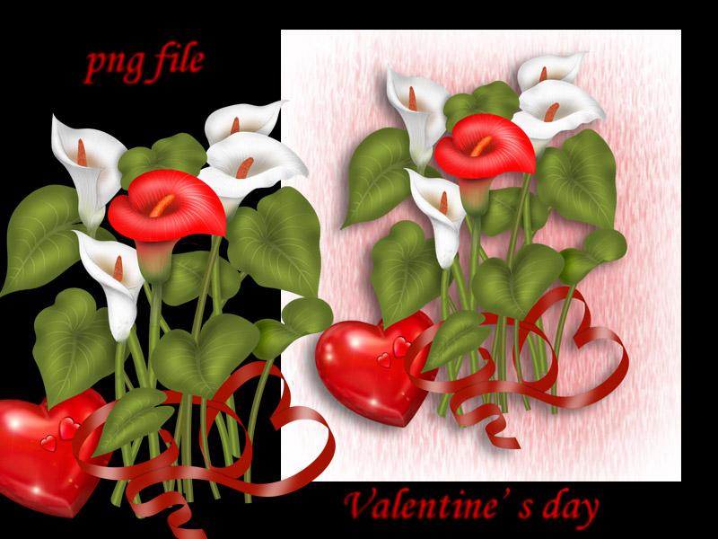 Valentine s day-Zantedeschia by roula33