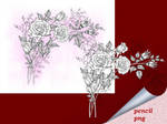 Roses Pencil