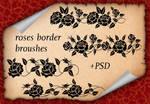 Roses Border Broushes