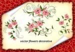 Vector Flowers Decorative