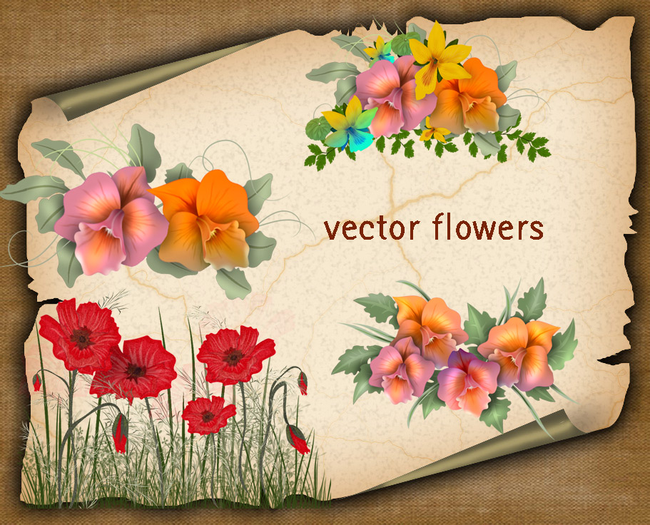 Vector Flowers by roula33