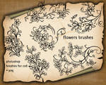 Flowers Decorative Brushes2h7y33