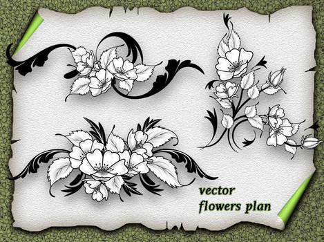 Vector Flower Plan