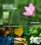 Nature_Photographic_Walls