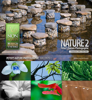 Nature_Photographic_Walls_2
