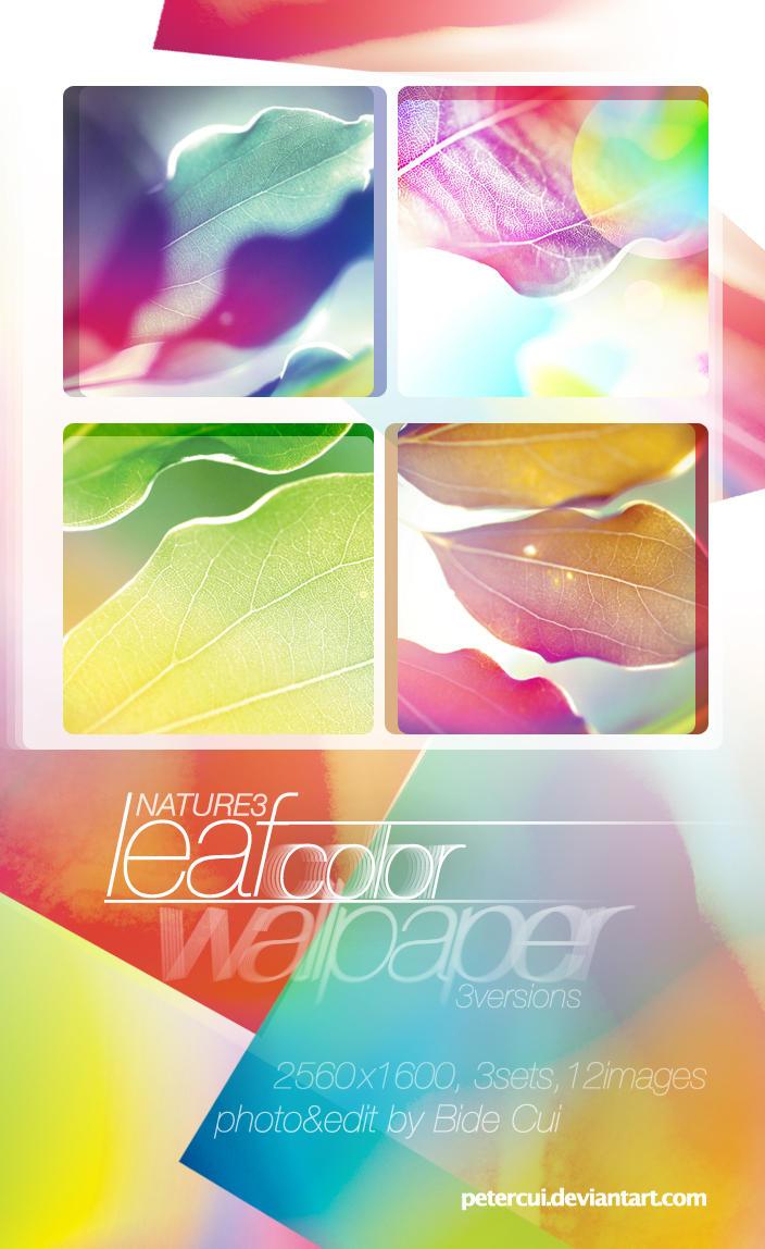 Nature3_Leaf_Color by petercui